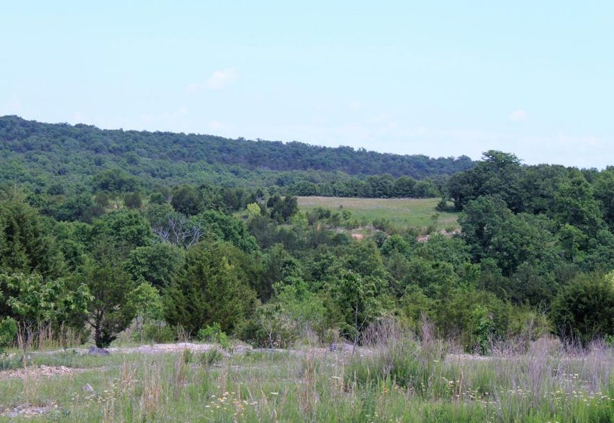 Tbd State Hwy Jj Hollister, MO 65672 - Photo 23