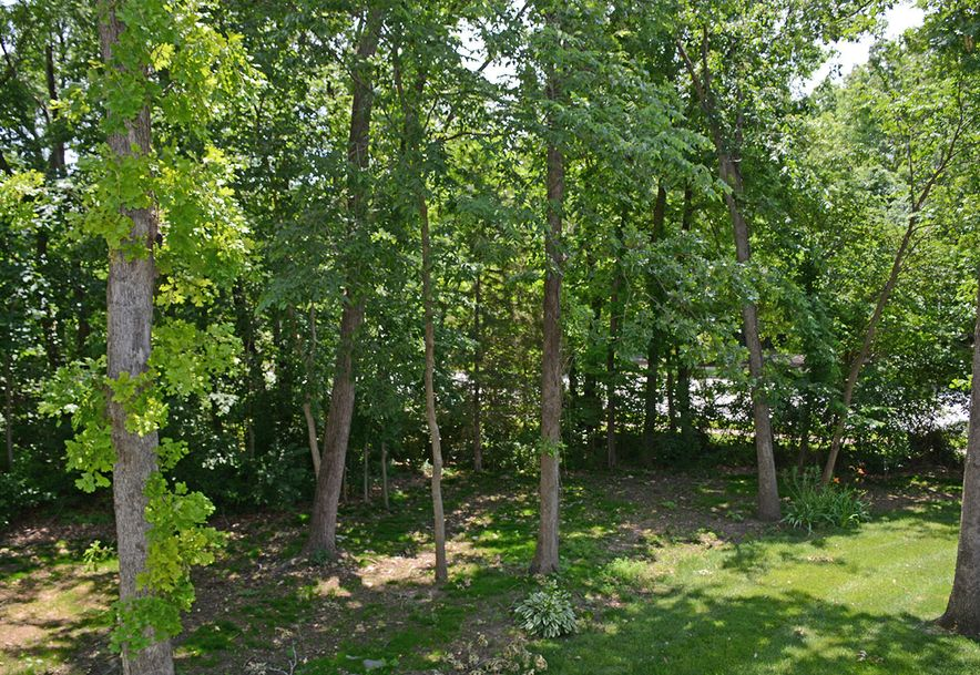 6230 South Bluff Ridge Road Ozark, MO 65721 - Photo 69