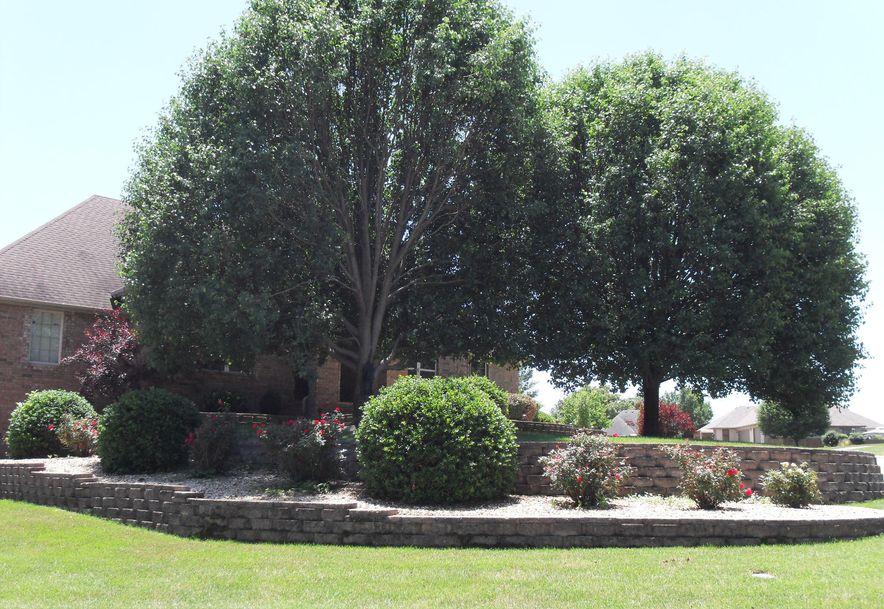 615 Canary Way Rogersville, MO 65742 - Photo 2
