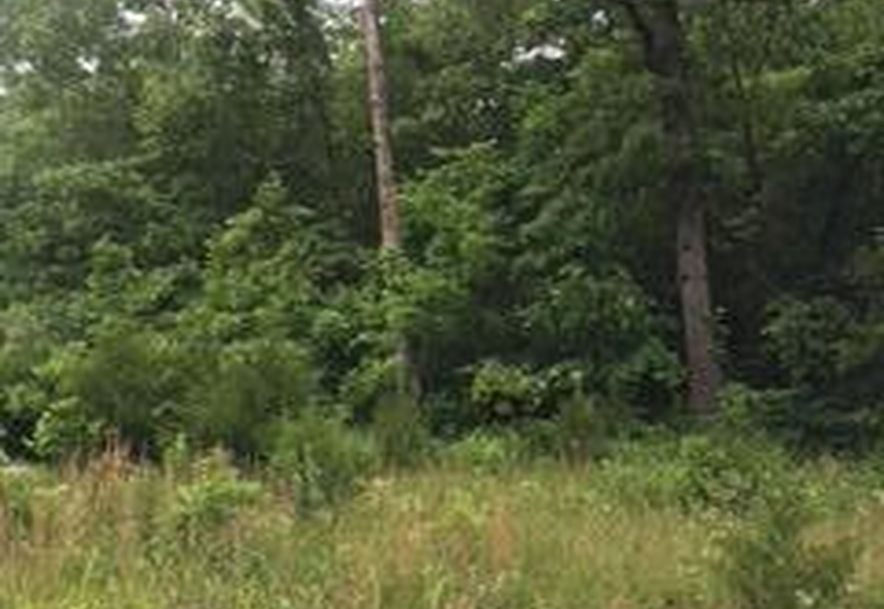 Lot 74 North Woods Road Rogersville, MO 65742 - Photo 2
