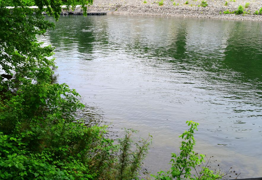 476 Foggy River Road Hollister, MO 65672 - Photo 82