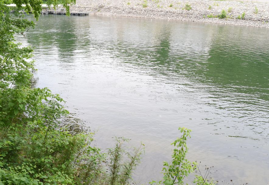 476 Foggy River Road Hollister, MO 65672 - Photo 83