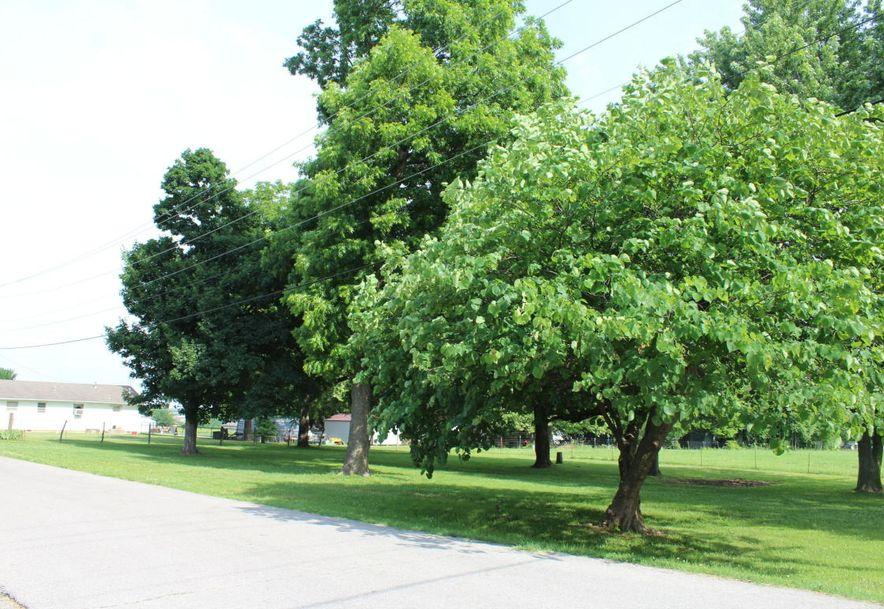 307 West Linn Marionville, MO 65705 - Photo 15