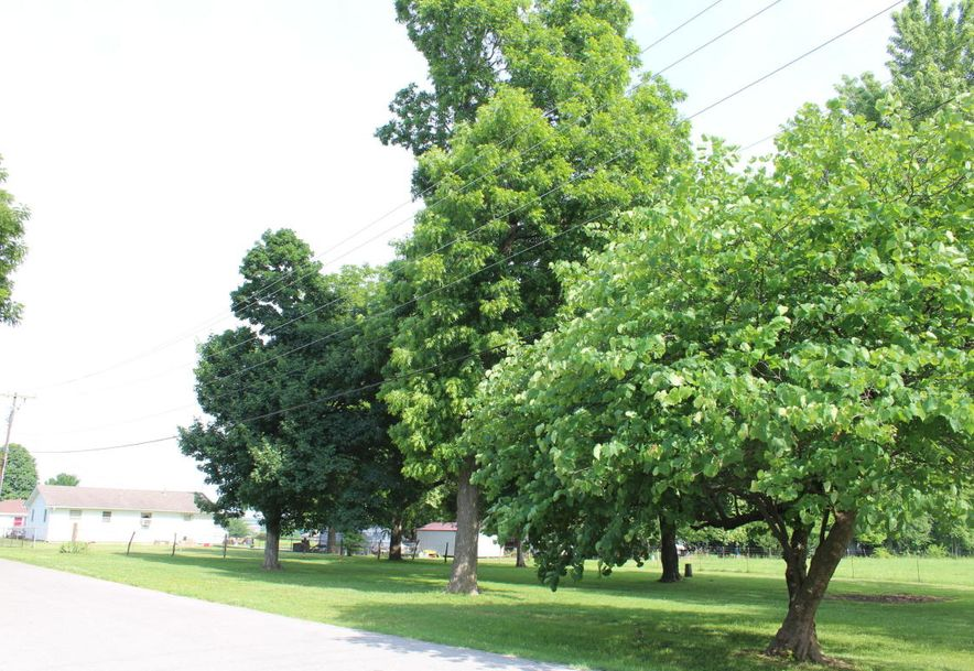 307 West Linn Marionville, MO 65705 - Photo 26