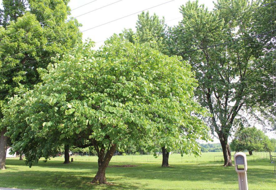 307 West Linn Marionville, MO 65705 - Photo 27