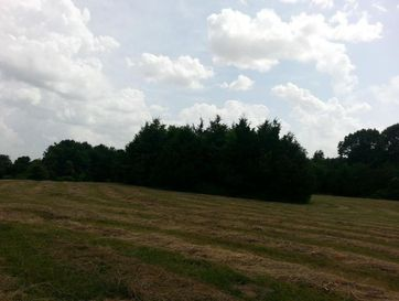 Lot 3 Sandy Forest Lane Clever, MO 65631 - Image