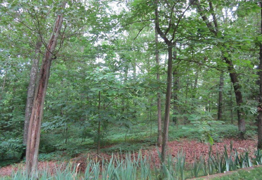 105 Rebas Hazel Nut Drive Fordland, MO 65652 - Photo 48