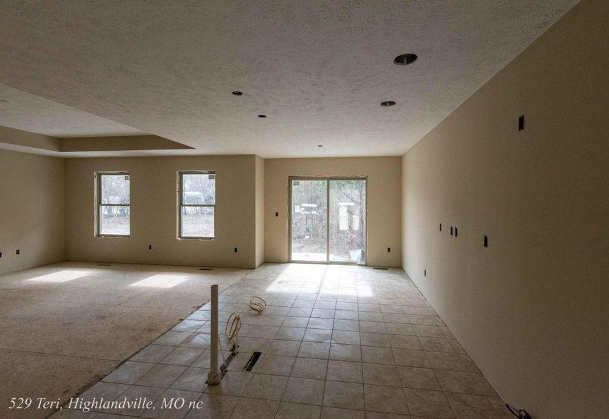 529 Terri Court Highlandville, MO 65669 - Photo 13