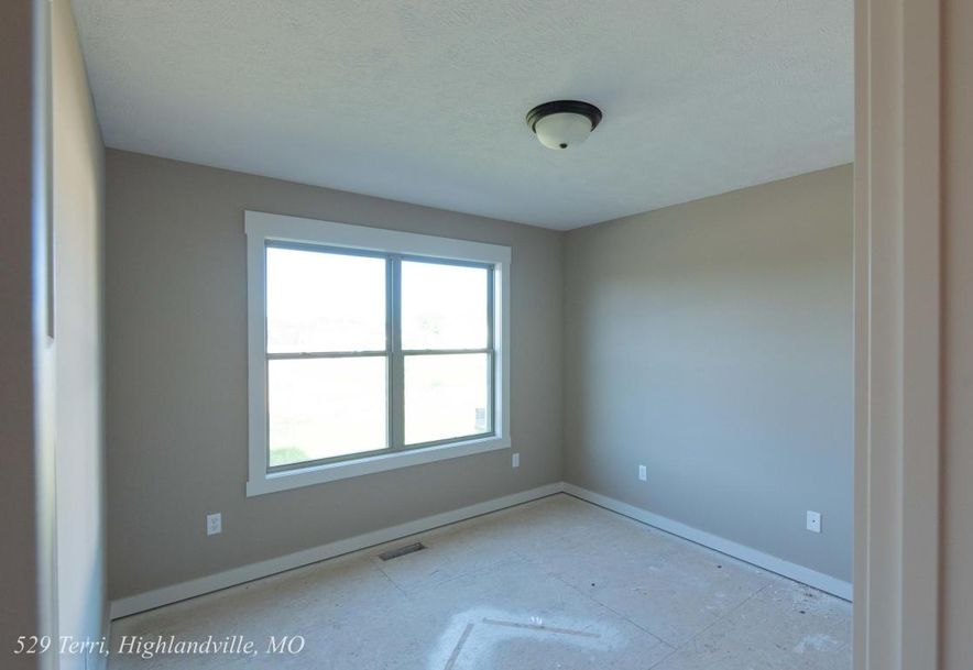 529 Terri Court Highlandville, MO 65669 - Photo 14