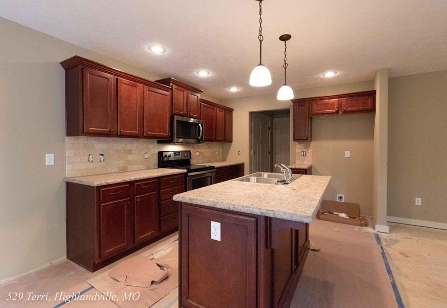 529 Terri Court Highlandville, MO 65669 - Photo 7