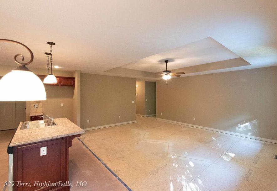 529 Terri Court Highlandville, MO 65669 - Photo 8