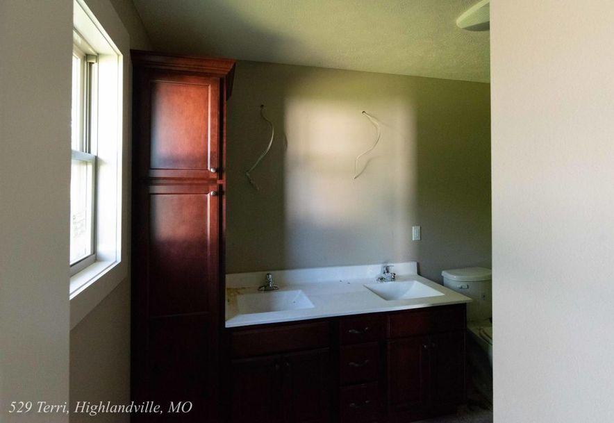 529 Terri Court Highlandville, MO 65669 - Photo 9