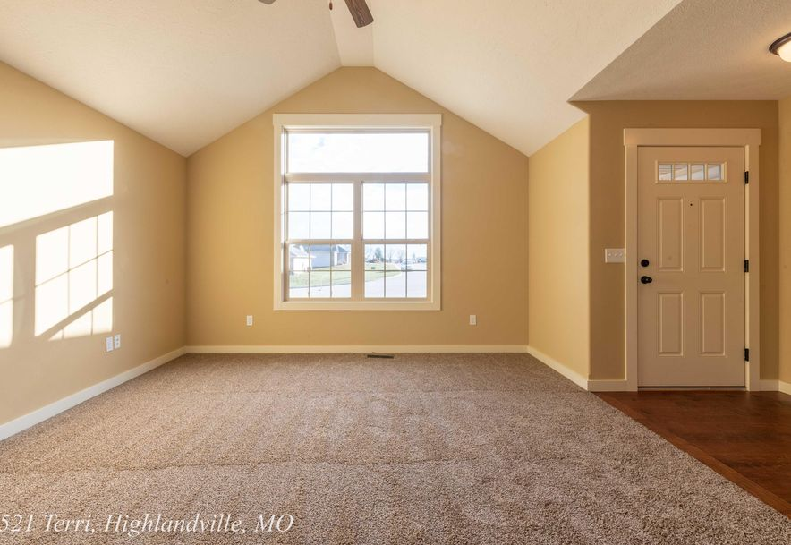 521 Terri Court Highlandville, MO 65669 - Photo 7