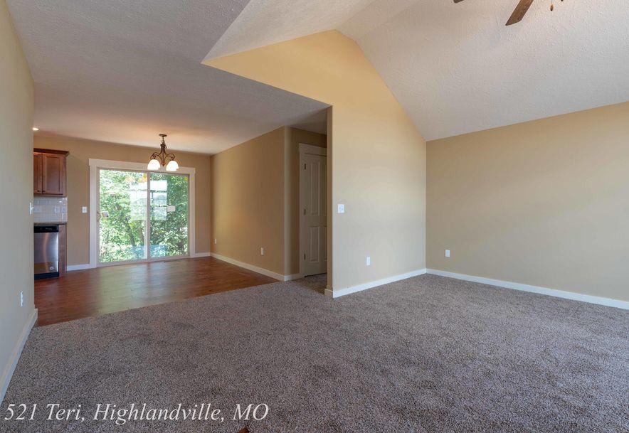 521 Terri Court Highlandville, MO 65669 - Photo 9