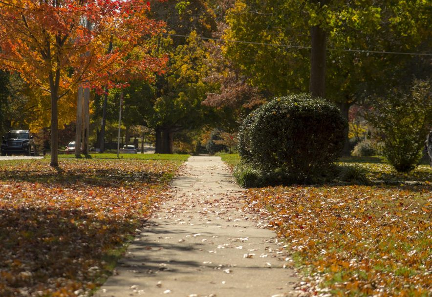 1039 South Weller Avenue Springfield, MO 65804 - Photo 52