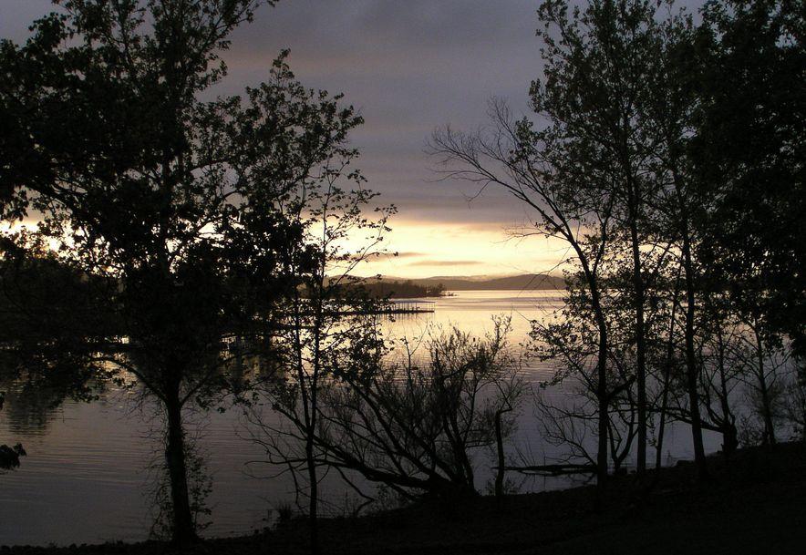 162 Lakewood Drive Hollister, MO 65672 - Photo 50