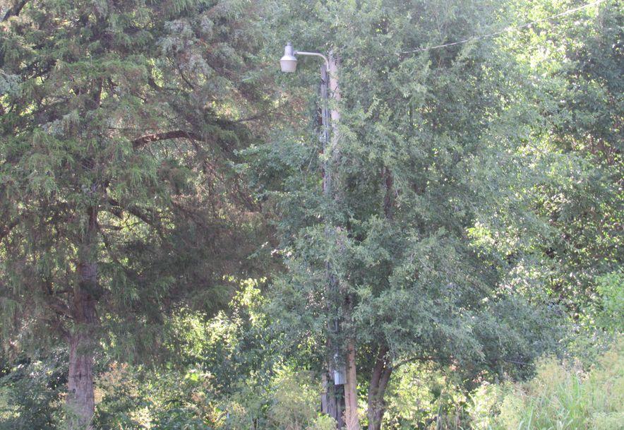 9325 West Farm Rd 84 Willard, MO 65781 - Photo 5