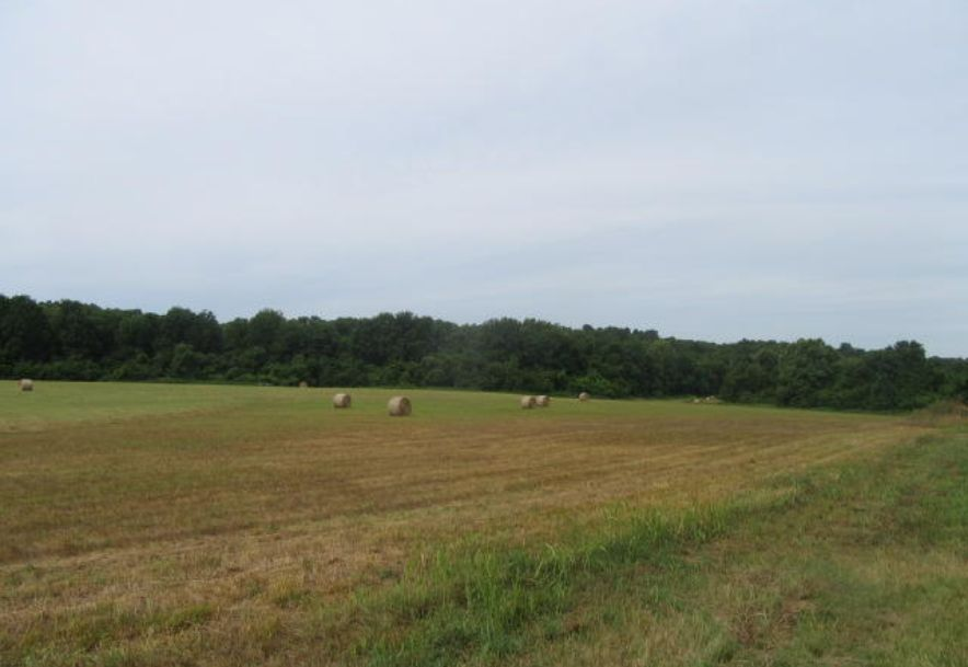 0 North Farm Rd 79 Willard, MO 65781 - Photo 33