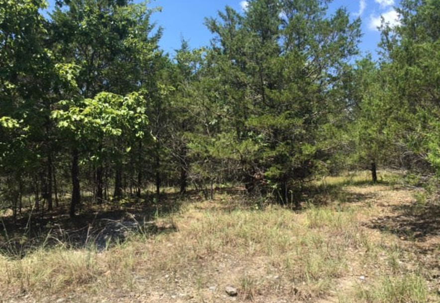 Lot 11 Crows Nest Road Indian Point, MO 65616 - Photo 1