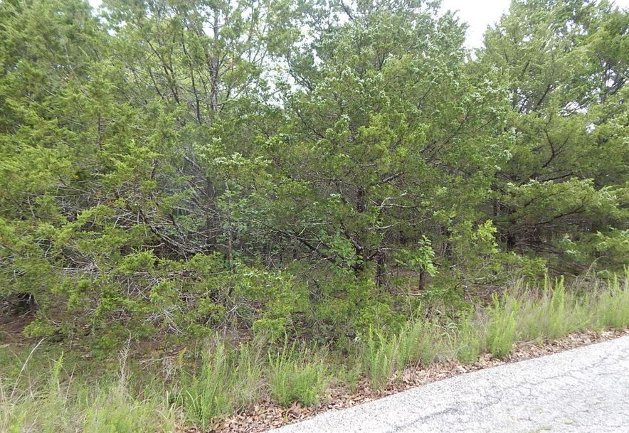 Lot 12 Crows Nest Road Indian Point, MO 65616 - Photo 6