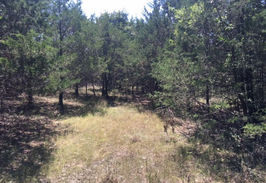 Lot 13 Crows Nest Road Indian Point, MO 65616 - Photo 2