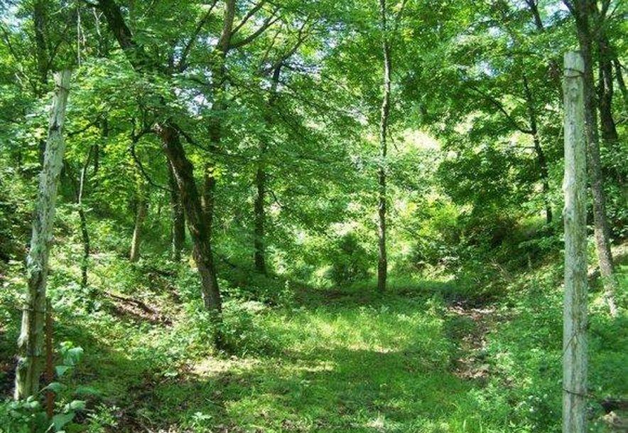 2003 Keystone Reeds Spring, MO 65737 - Photo 2