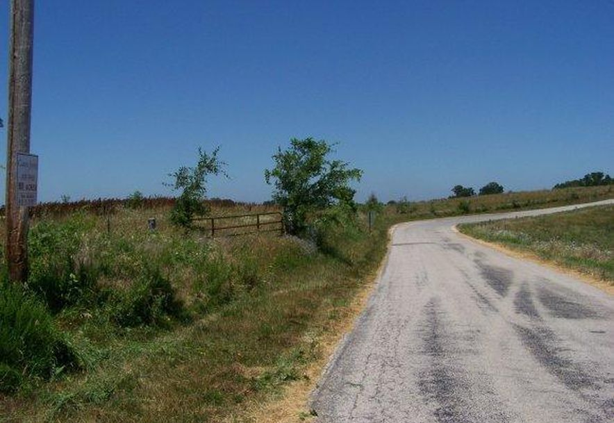 2003 Keystone Reeds Spring, MO 65737 - Photo 13