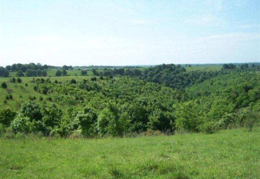 2003 Keystone Reeds Spring, MO 65737 - Photo 14