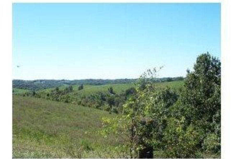 2003 Keystone Reeds Spring, MO 65737 - Photo 20