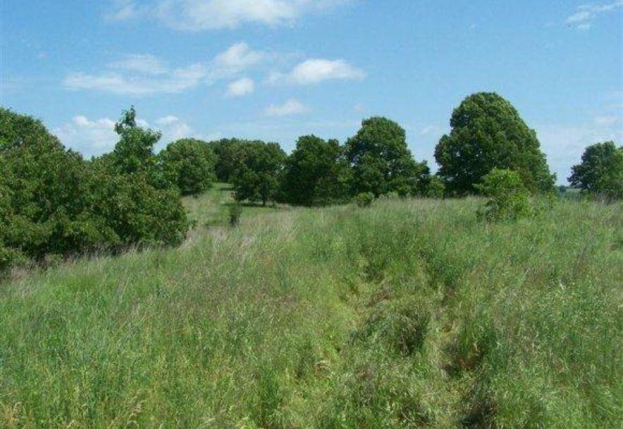 2003 Keystone Reeds Spring, MO 65737 - Photo 23