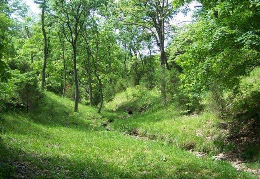 2003 Keystone Reeds Spring, MO 65737 - Photo 5