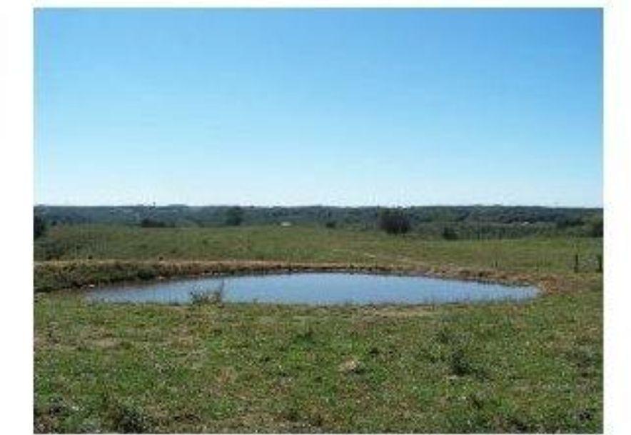 2003 Keystone Reeds Spring, MO 65737 - Photo 6
