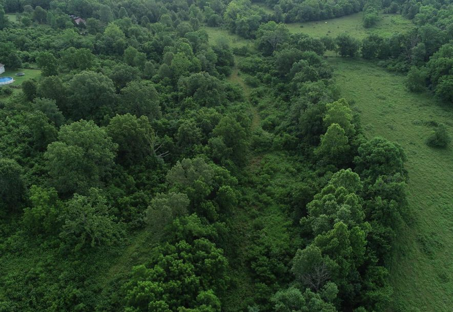 14142 County Road North 5-100 Ava, MO 65608 - Photo 60