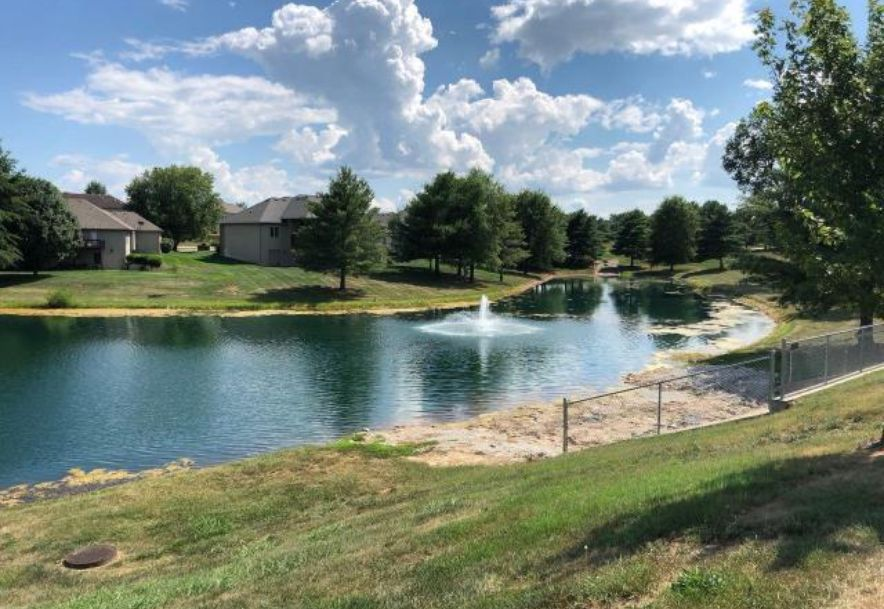 504 Falcon Heights Rogersville, MO 65742 - Photo 37