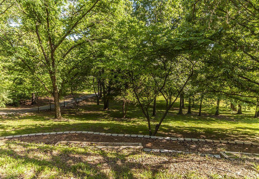 203 Cedar Hills Road Ozark, MO 65721 - Photo 36