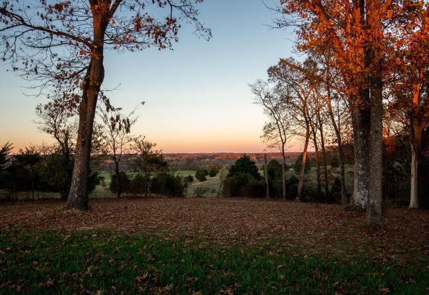 1751 East Cottage Boulevard Ozark, MO 65721 - Photo 64
