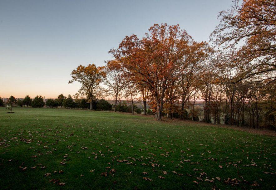 1751 East Cottage Boulevard Ozark, MO 65721 - Photo 65