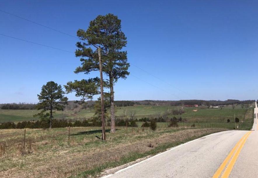Rt1 Bx 55 Highway EE Mountain Grove, MO 65711 - Photo 16