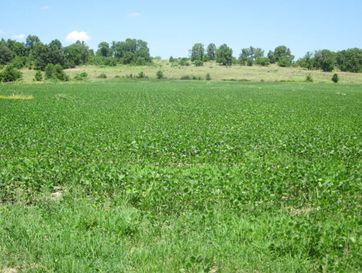 Tbd South 65th Road Aldrich, MO 65601 - Image 1
