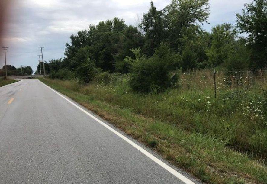 0 North Farm Road 81 Bois D Arc, MO 65612 - Photo 6