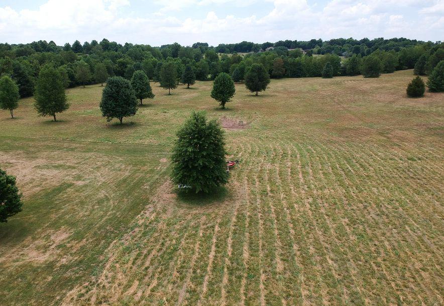 1005 Hickory Ridge Drive Nixa, MO 65714 - Photo 66