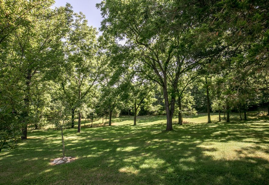 1031 Green Valley Road Clever, MO 65631 - Photo 42
