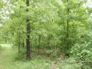 Tbd County Road 630 Gainesville, MO 65655 - Image