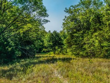 420 Cedar Oak Drive Gainesville, MO 65655 - Image 1