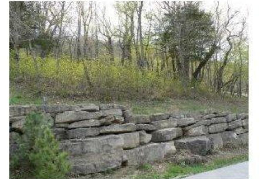 26 Canada Drive Reeds Spring, MO 65737 - Photo 5