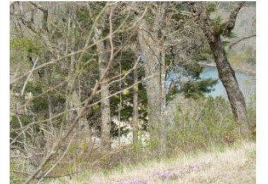 26 Canada Drive Reeds Spring, MO 65737 - Photo 6