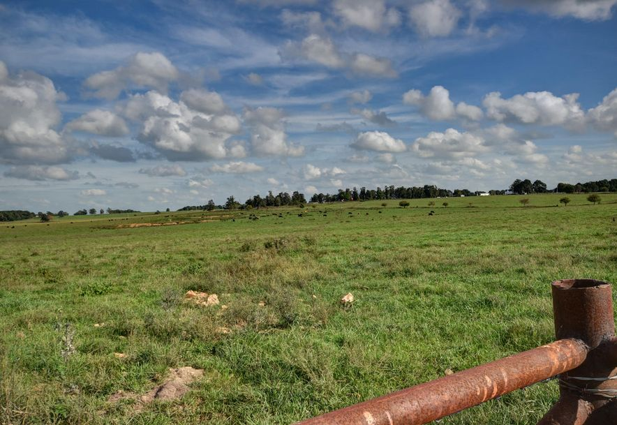 17204 B Highway Ff Aurora, MO 65605 - Photo 41
