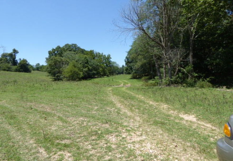 1970 Baker Creek Road Mansfield, MO 65704 - Photo 31