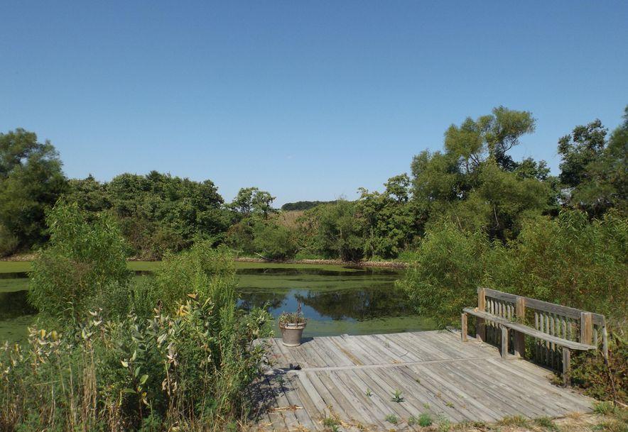 383 Safari Lane Strafford, MO 65757 - Photo 34