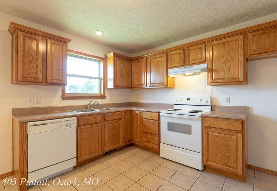 403 East Pintail Drive Ozark, MO 65721 - Photo 15